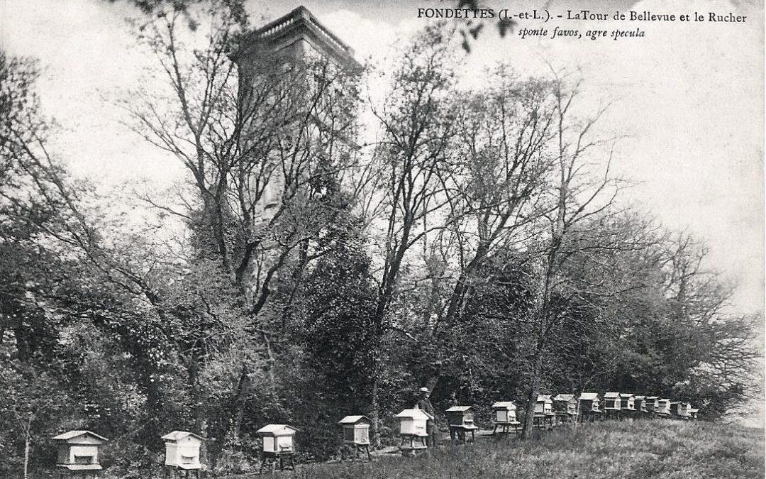 Au temps  où les abeilles…