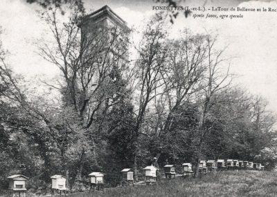 Le rucher de Bellevue